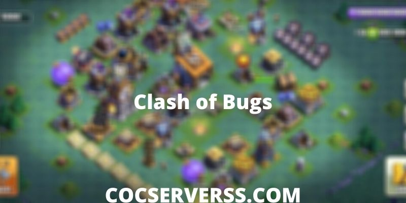 Clash of Bugs